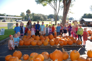 Group pumpkins 2014